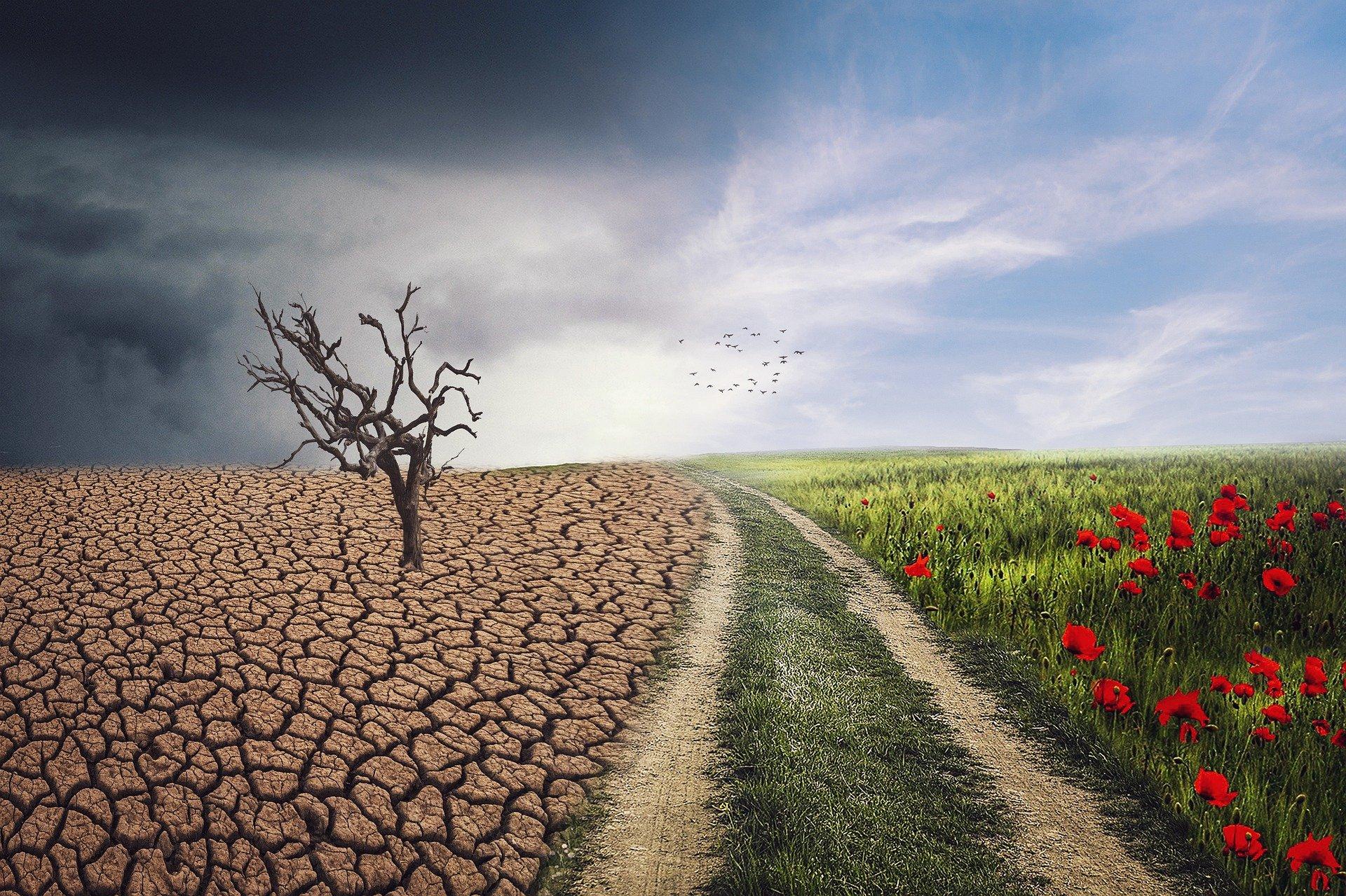 The BritishSpanish Society Climate Change Panel
